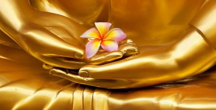 VB-COM-golden-Buddha-flower-mudra_800357561-700x325